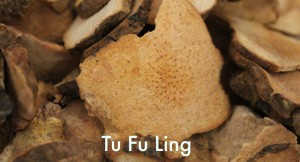 Tu Fu Ling - Chinese herb for acne